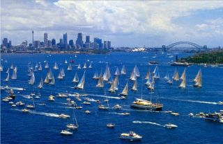 sydney-to-hobart-race-aussie-funny-australian-humour-humor